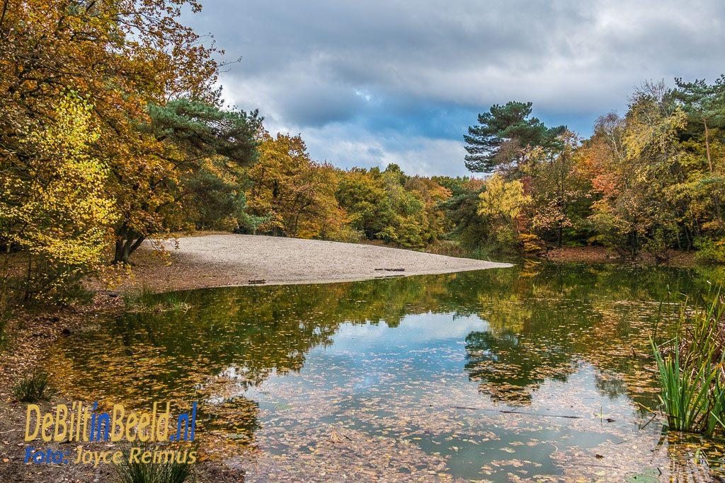 Heidemeertje Bilthoven in de herfst