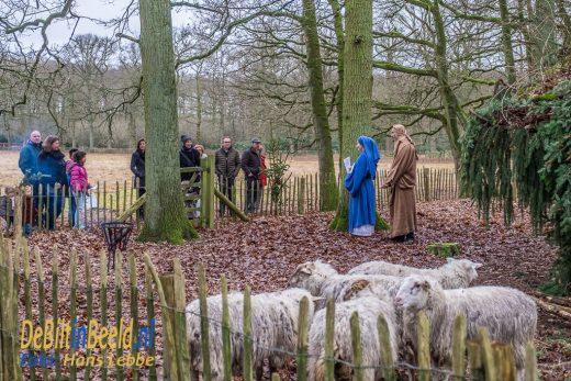 Beerschoten Levende Kerststal Utrechts Landschap