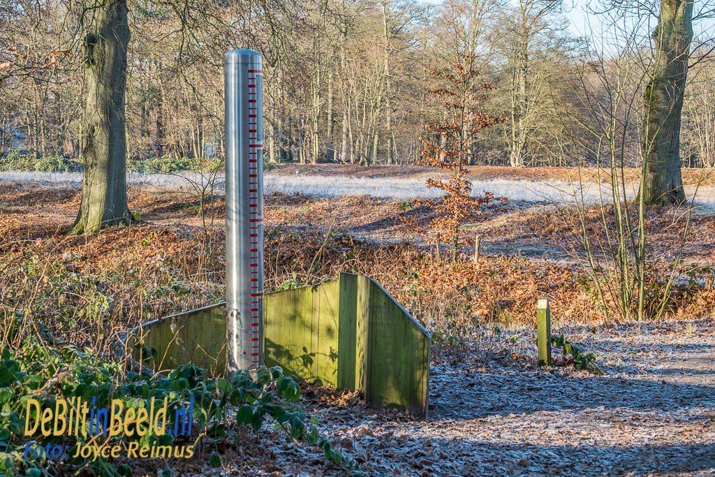 Winterse wandeling Beerschoten Houdringe