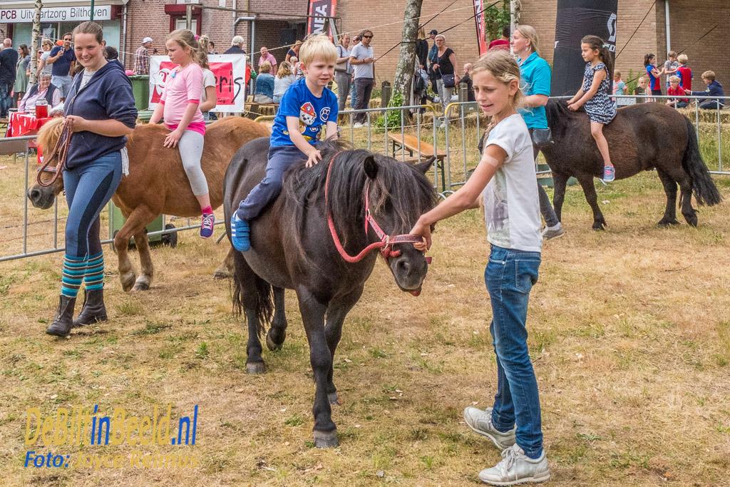 Biltse Zeepkistenrace 2017 Bilthoven