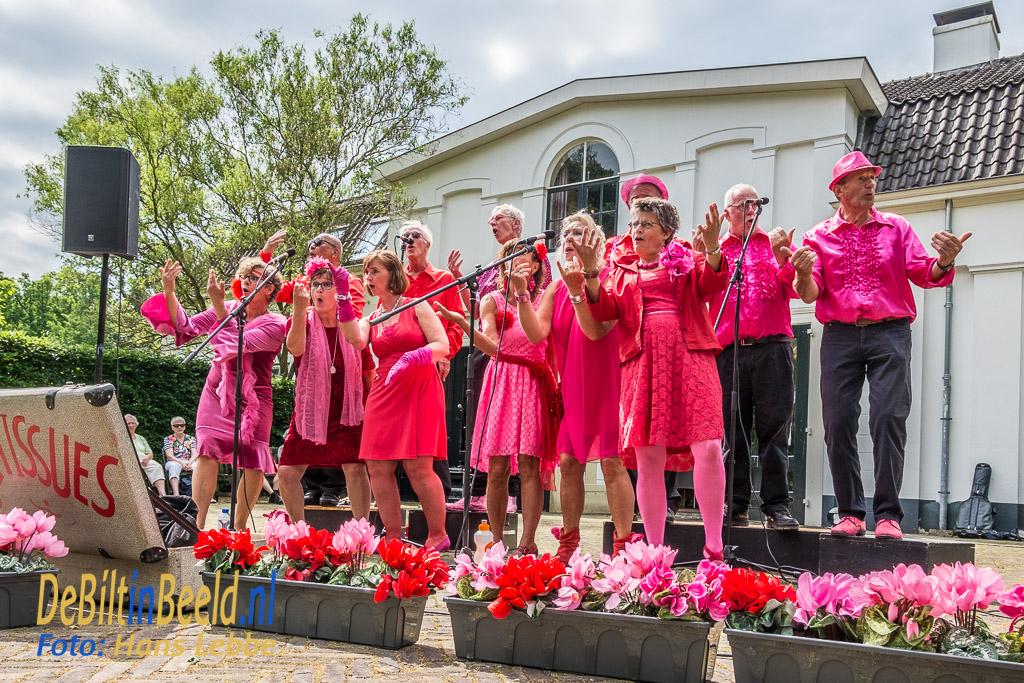 Zomerconcert juni 2017 De Tissues in Beerschoten De Bilt