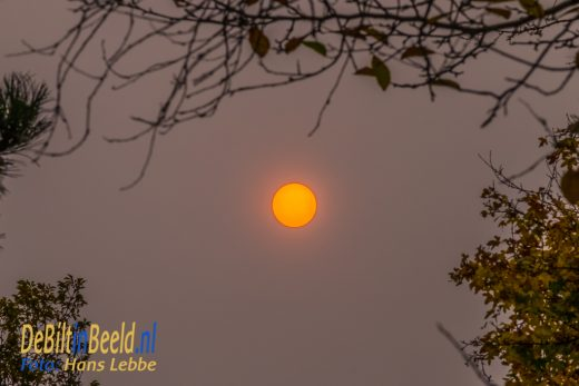 De Zon leek wel de Maan vandaag