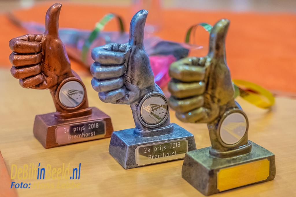 Sjoelkampioenschappen De Bremhorst Bilthoven
