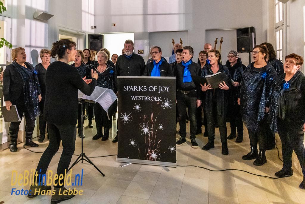 Nieuwjaarsreceptie gemeente De Bilt 2019