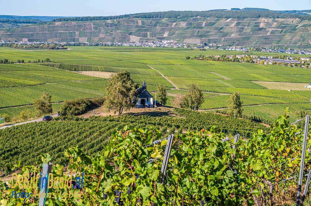 La Grange Verte Wines Weingut Heinz Schneider Leiwen Deutschland